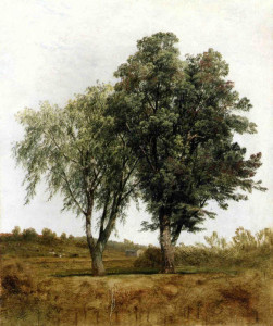 "John Kensett - ""A Study of Trees"" - Oil"