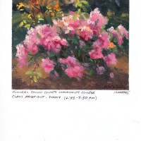 Flowers, Collin County Community College - 4.5 x 4.5