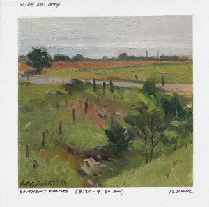 """""""After a Brief Shower"""" (Field Study) - 4.5"""" x 4.5"""" - Oil"""