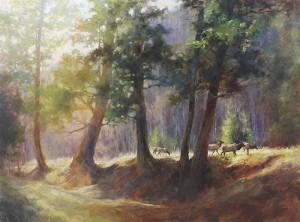 "Blackwood - ""Among the Pines"" - 36"" x 48"" - Oil"