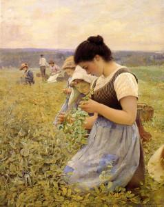 """""""Women in the Fields"""" - 31"""" x 26"""" - Oil"""