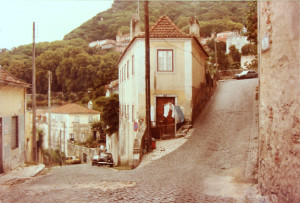 This is the reference photo used, taken many years ago when in Sintra, Portugal.